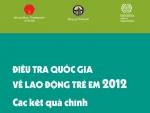 Điều tra đầu tiên của Việt Nam về lao động trẻ em