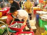 Cả nước đang có 1,75 triệu lao động trẻ em - Đài Tiếng nói nhân dân TP.HCM
